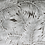 Thumbnail: Bloon Création X Nobilis - Nobilis Jungle