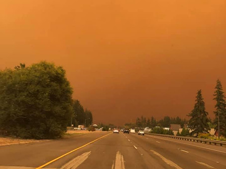 My home state, California, is burning.