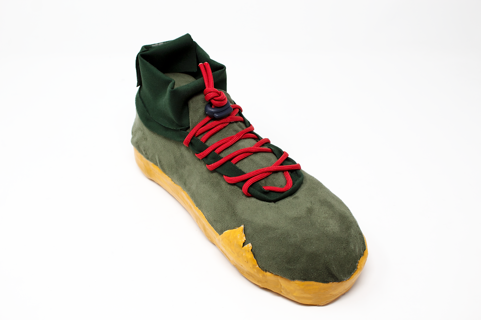 shoe_proto_final.png