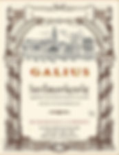 GALIUS ST Emilion Grand Cru.jpg
