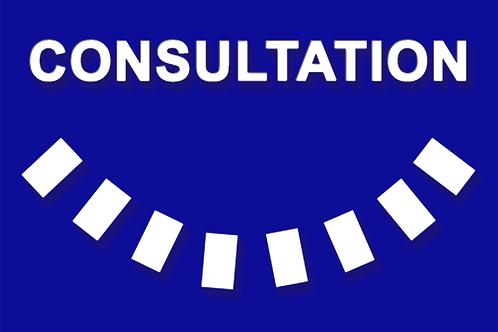 Consultation - 2 sujets par téléphone
