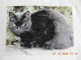 Cross stitch 4 Oct 2020.JPG