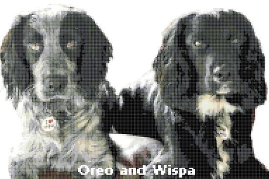 Oreo & Wispa Preview.JPG