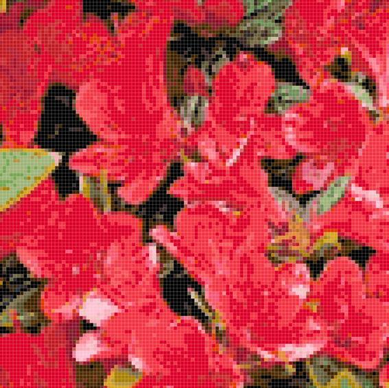 Flowers 5 preview.JPG