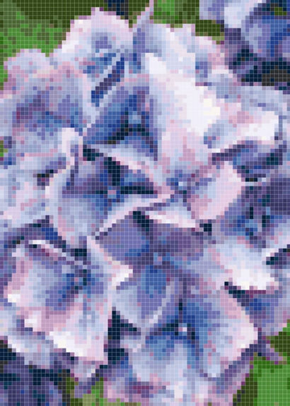 Flowers 3 Preview.JPG