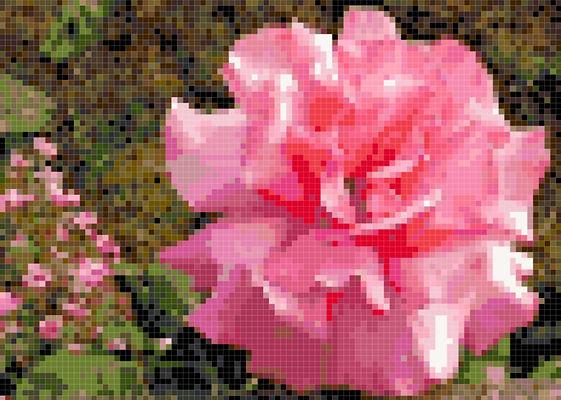 Flower 6 Preview.JPG