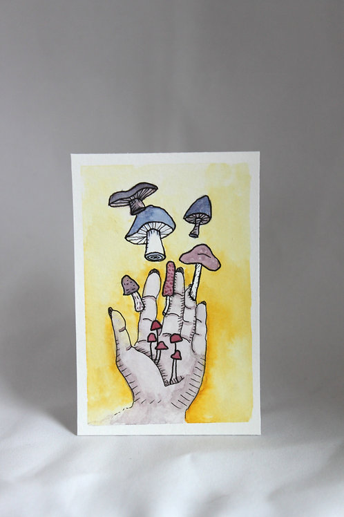 Mushroom Growth (I)