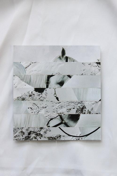 White Horse error collage