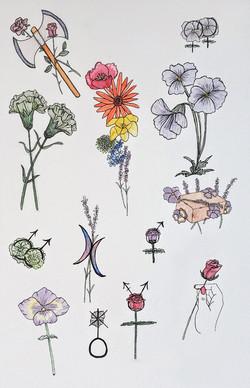 lgbtq history floral flash