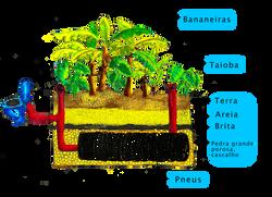 fossa septica site
