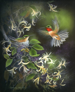 Rufous Hummingbirds
