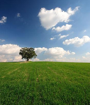 Opłaty za korzystanie ze środowiska, KOBIZE, pozwolenie na zbieranie odpadów