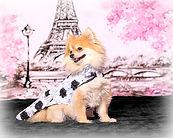 Peneolope in Paris sm.jpg