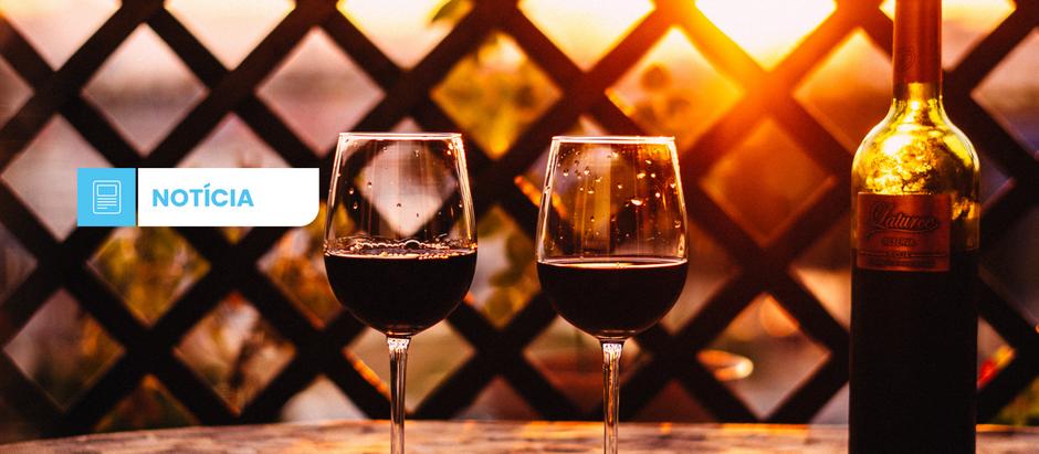 Mercado de importação de vinhos cresce 5% nos primeiros cinco meses do ano