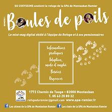 BOULE DE POILS 001 couv.jpg