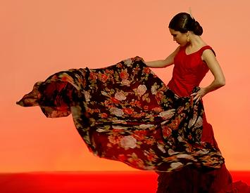 Flamenco Sevillana Workshop