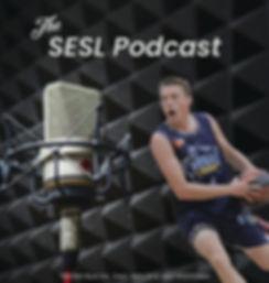Podcast Banner-01.jpg