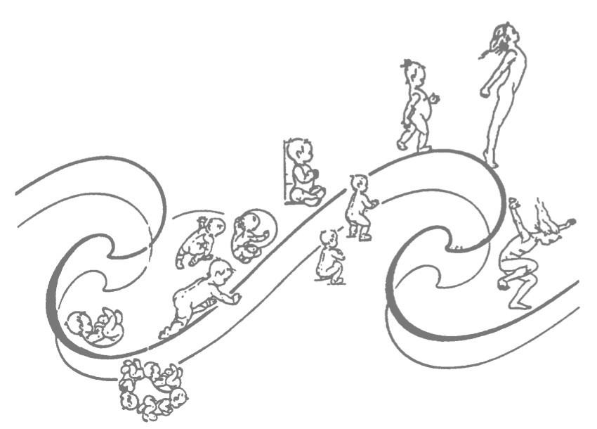 A Onda de Crescimento de GODELIEVE DENYS STRUYF