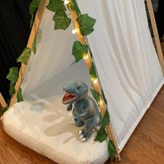 Dinosaur Theme Details