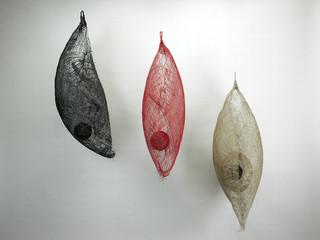 Trilogia Viluppo, 2005