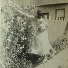 Shirley picking flowers.JPG