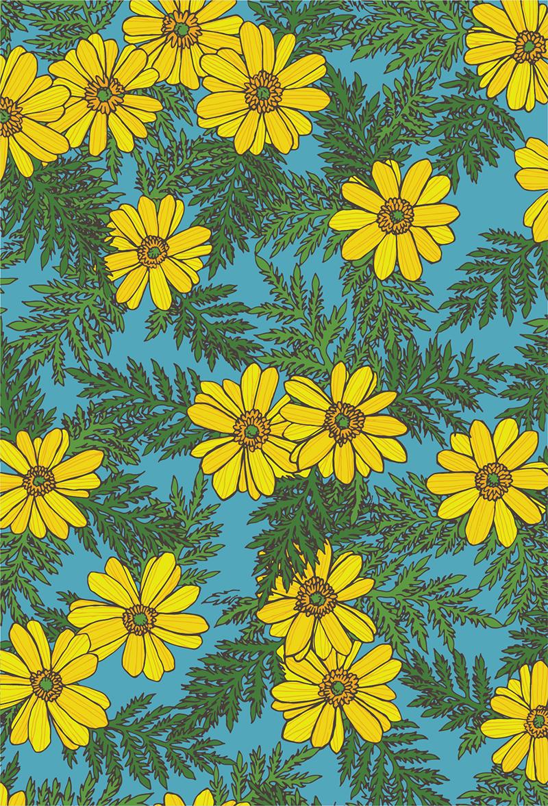 Flowers in my world 2