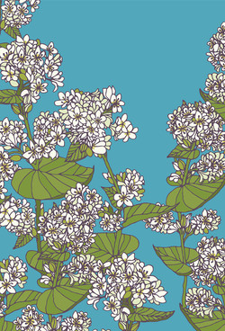 Flowers in my world 9