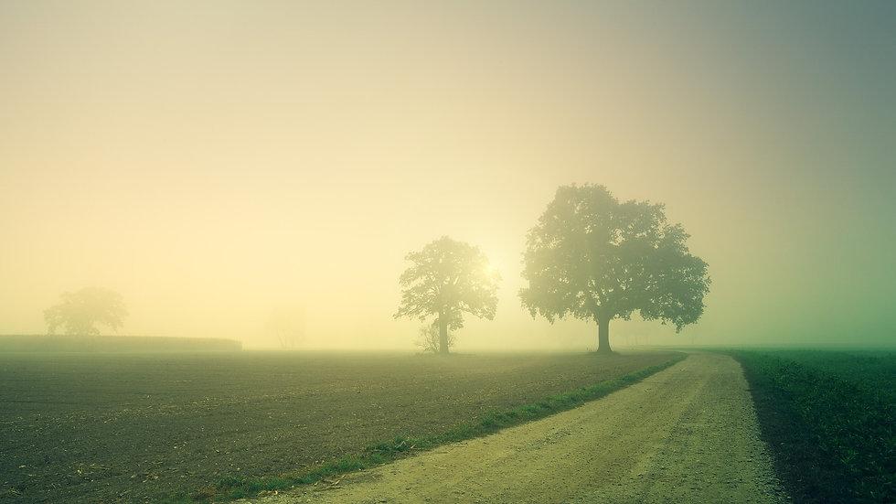 dawn-3804124_1920.jpg
