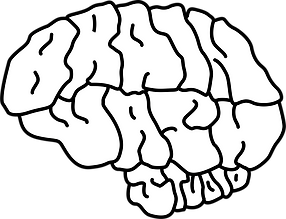 Brainwash Studio_bw.png