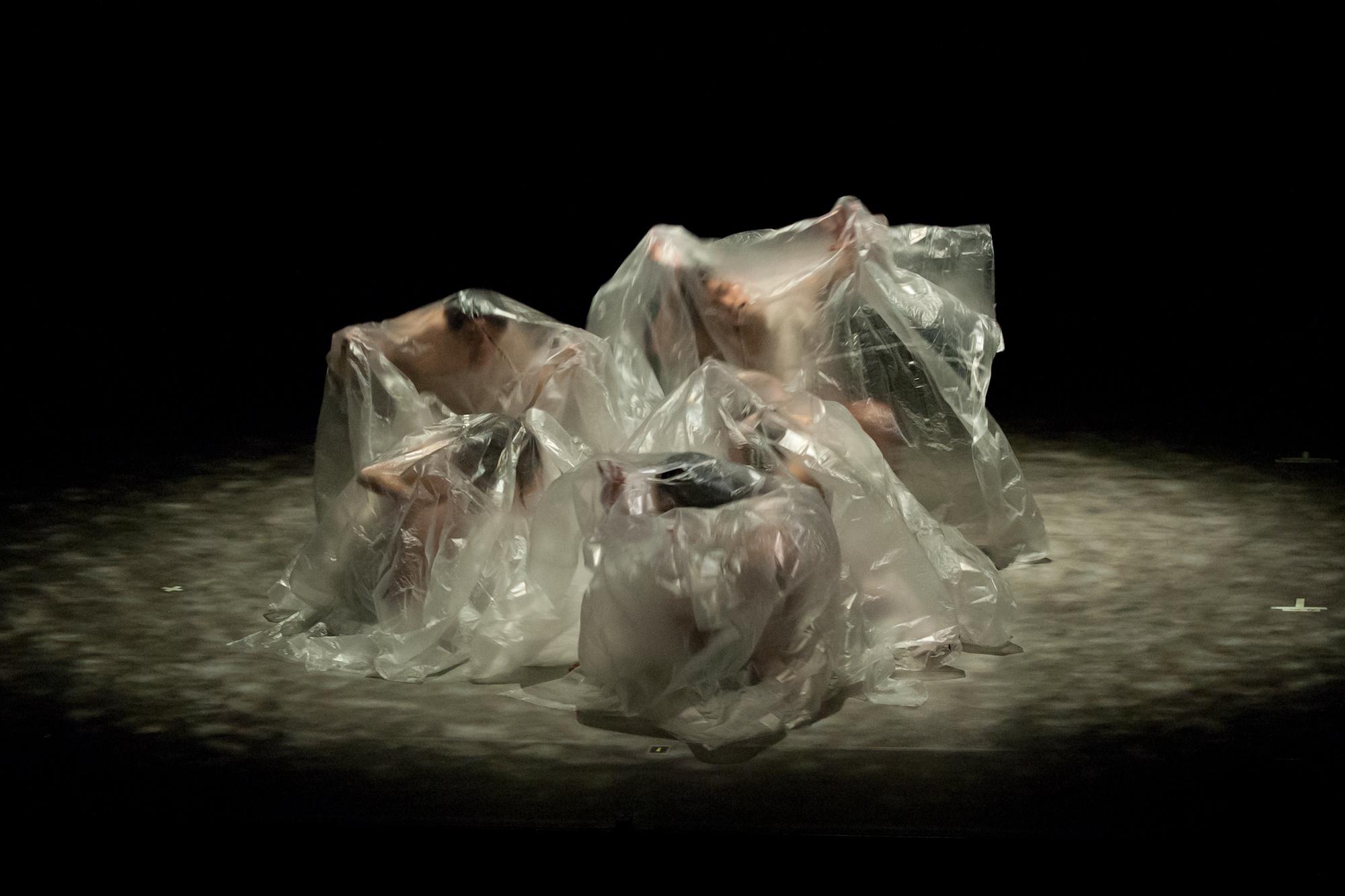溶け出す深層心理を垣間見る、夢現