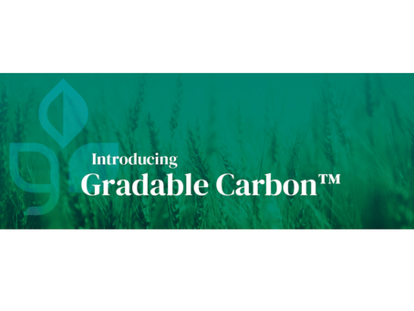Maintaining Optionality with Carbon Credits