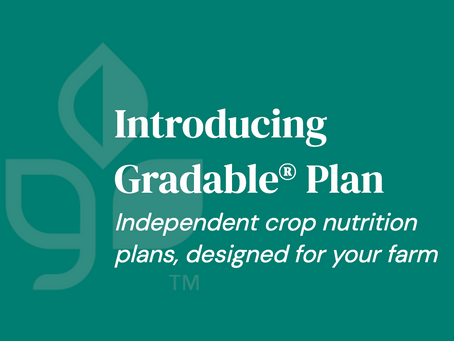 Introducing Gradable® Plan