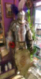 MetrOasis Knight