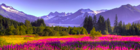 Beauty School Alaska