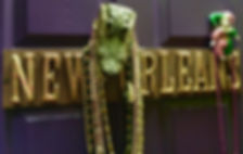 MetrOasis New Orleans Esthetician Room Door Sign