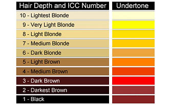 Hair color levels chart.