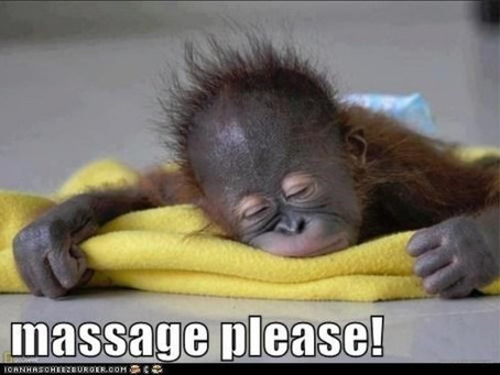 Don't miss out book your massage today!