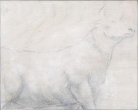 7 Bull.jpg