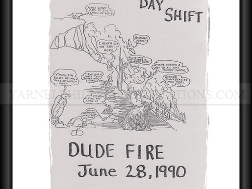 2- Was the June 26, 1990, Dude Fire a precursor for the incomplete lessons learned on June 30, 2013?