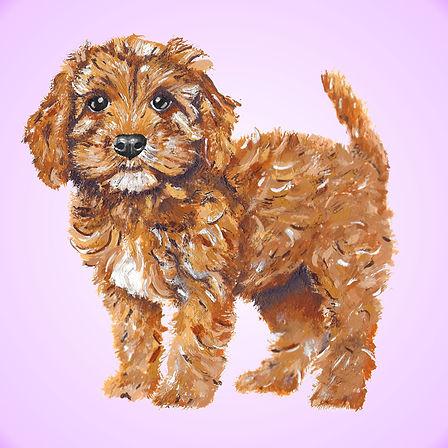 Cookie-Website-Picture.jpg