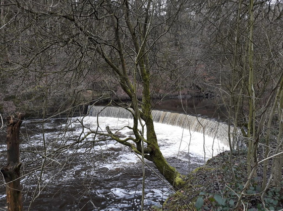 View of the weir from what was once the vantage point of Gibraltar Mill.