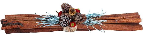 Cinnamon sticks with cones