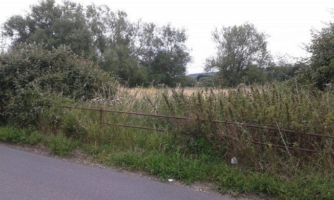 """""""It'll be as muddy as fuck down that there embankment,"""" he protested, but she was already striding through a gap in the hedge and on into the shadows, her skirt swishing against the long grass. (I.,2)"""
