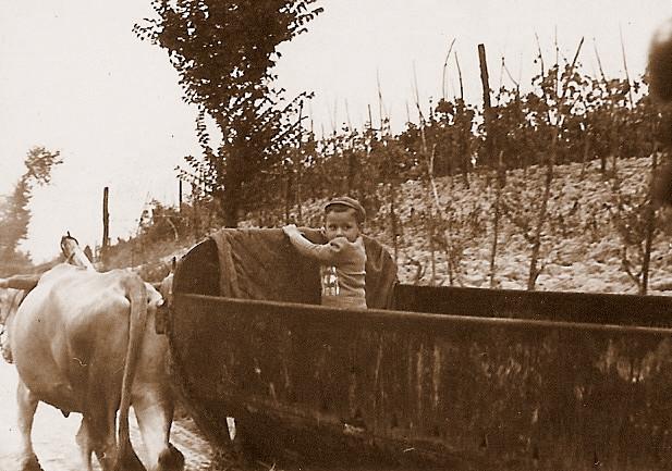 Terre di Sarizzola Storia 01