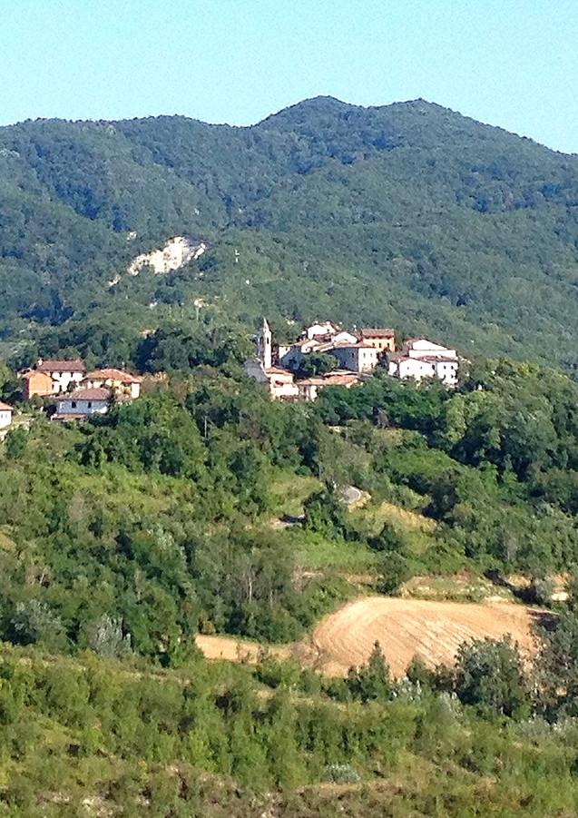 Terre di Sarizzola - Sarizzola.JPG
