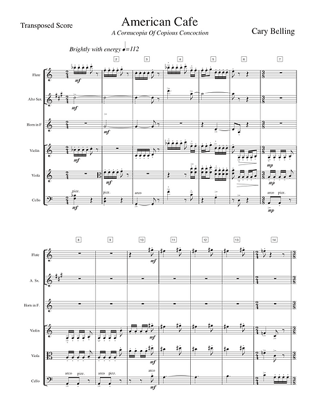 Concerto for viola and Orchestra Front p