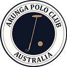 FINAL_Arunga_LOGO_2019.png