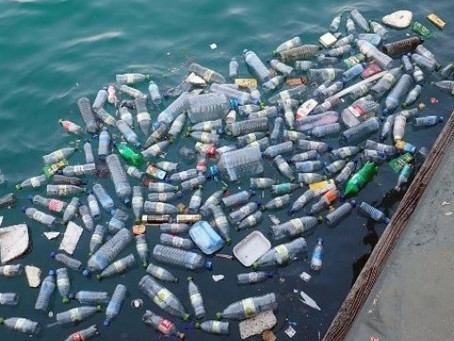 UN Global Initiative Tackles Marine Litter to Clean World's Oceans