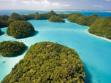 Tiny Palau beats the world with 99% COVID-19 vaccination, says Red Cross