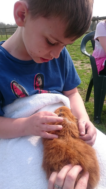 Mesmerised! The magic of animal therapy!